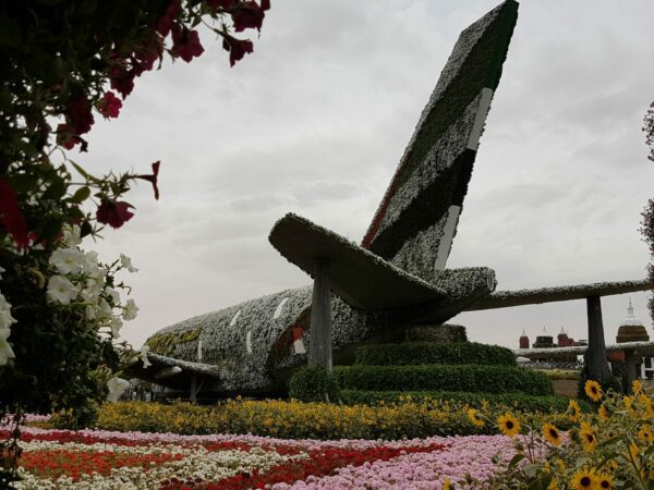 Flowered Airplane in the Miracle Garden