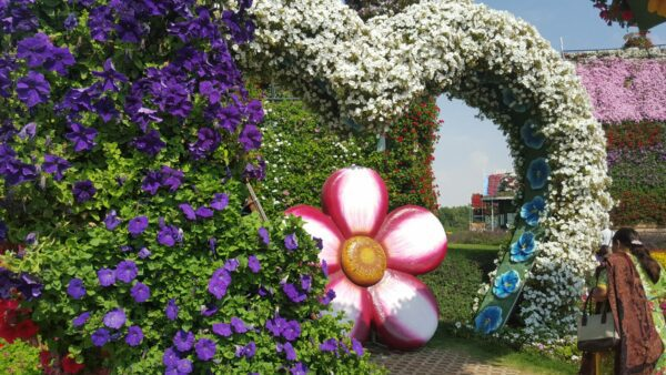 We visit the Miracle Garden